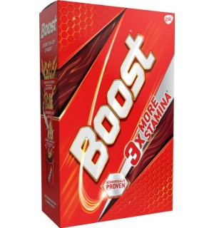 BOOST 3X MORE STAMINA 500G  (FREE SPORTS SIPPER )